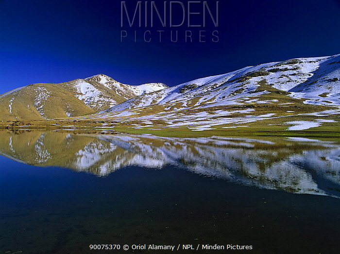 Mountains with snow reflected in an alpine lake in Oukaimeden, Haut Atlas, Morocco, November  -  Oriol Alamany/ npl