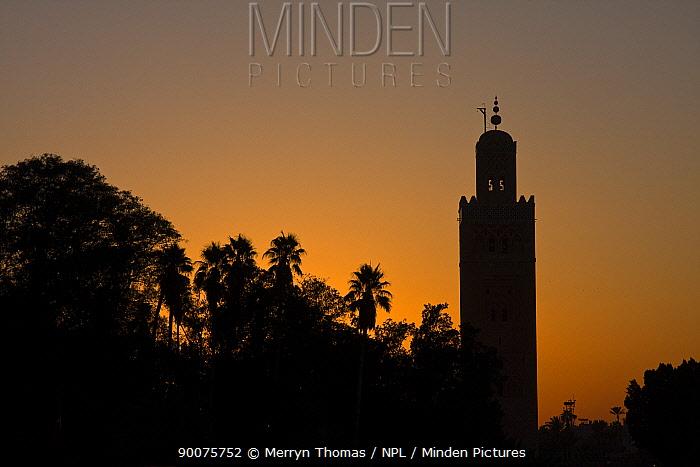 Katoubia Mineret at sunset, Marrakech, Morocco, November 2008  -  Merryn Thomas/ npl