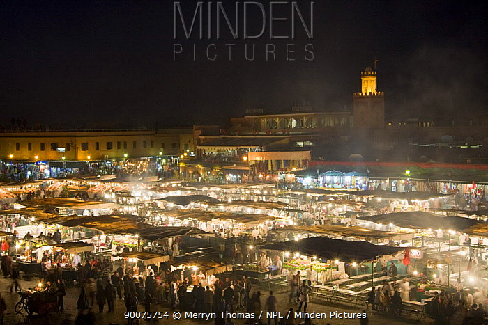Djemaa el-Fna town square at night, Marrakech, Morocco, November 2008  -  Merryn Thomas/ npl