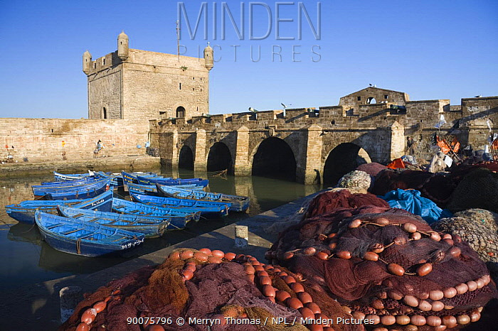 Fishing nets and open-boats moored infront of the old fort, Essaouira fishing port, Morocco November 2008  -  Merryn Thomas/ npl