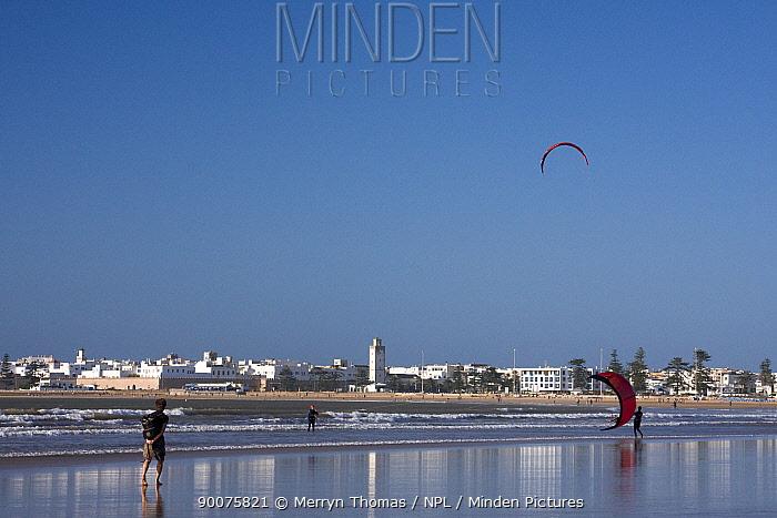 People launching kites for kitesurfing on Essaouira beach, Morocco, with Essaouira town in the background November 2008  -  Merryn Thomas/ npl