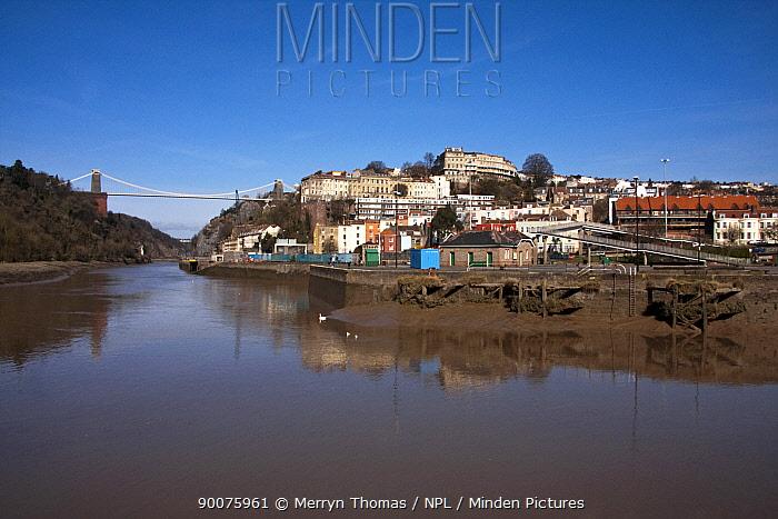 Clifton Suspension Brisge from Hotwells docks, Bristol March 2009  -  Merryn Thomas/ npl