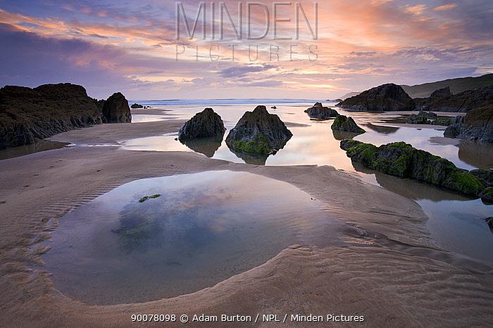 Rockpools exposed at low tide on Combesgate Beach, Devon, England  -  Adam Burton/ npl