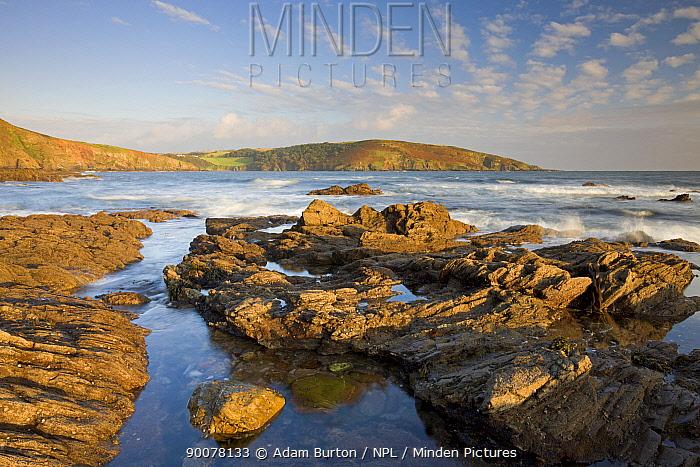Evening sunlight bathes the rocky shores and cliffs golden at Wembury Bay in South Devon, England  -  Adam Burton/ npl
