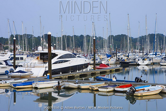 Boats moored on the Hamble estuary at Bursledon, Southampton, Hampshire, England  -  Adam Burton/ npl