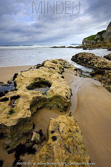 Coastal rock formations at Whitepark Bay, County Antrim, Northern Ireland  -  Adam Burton/ npl