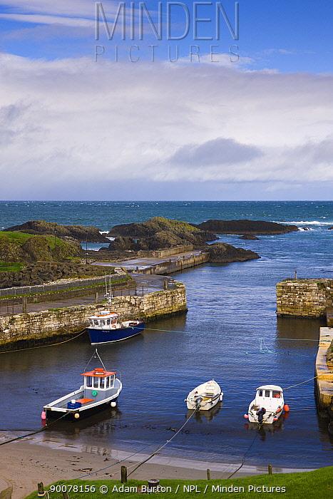 Ballintoy Harbour, Causeway Coast, County Antrim, Northern Ireland  -  Adam Burton/ npl