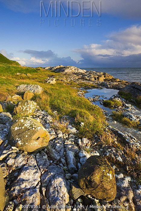 Coastline near Portmuck on Islandmagee, Northern Ireland, UK  -  Adam Burton/ npl