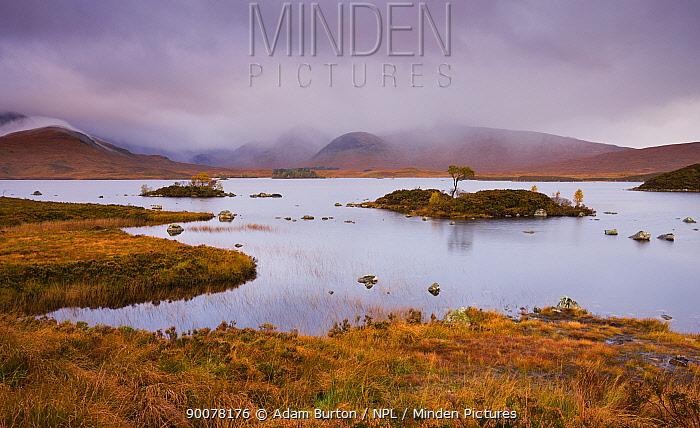 Stormy skies over Lochan Na H-Achlaise on Rannoch Moor in Autumn, Highlands, Scotland  -  Adam Burton/ npl