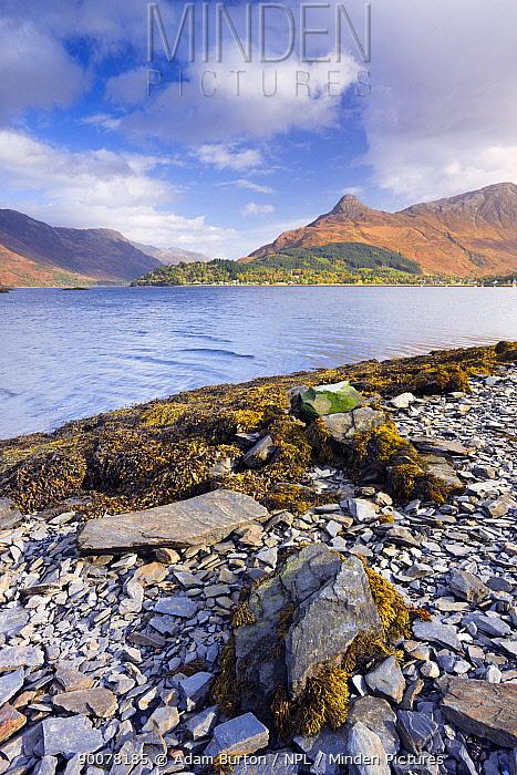 Looking across Loch Leven to Glencoe village and the Pap of Glencoe, Highlands, Scotland  -  Adam Burton/ npl