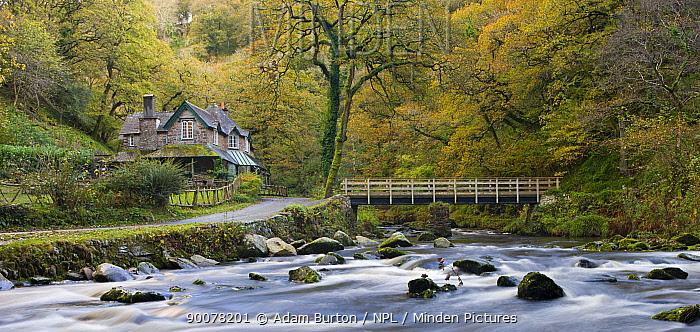 Watersmeet House in Autumn, Exmoor National Park, Devon, England  -  Adam Burton/ npl