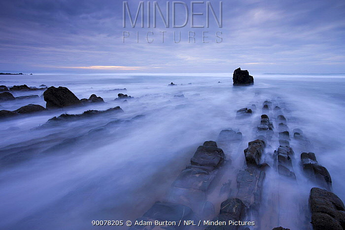 Waves rush over the rocky ledges at Sandymouth Bay in North Cornwall, England  -  Adam Burton/ npl