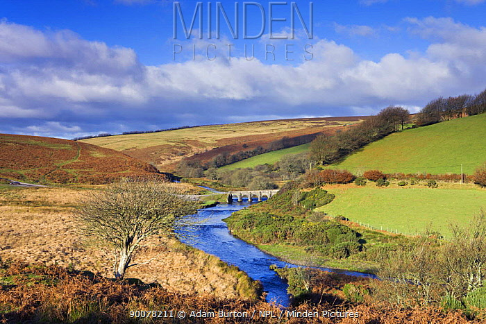 Landacre Bridge spanning the River Barle near Withypool, Exmoor National Park, Somerset, England  -  Adam Burton/ npl