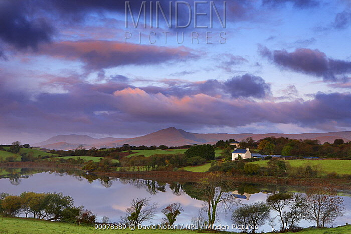 Dawn over Bantry Bay, nr Bantry, County Cork, Ireland, October 2008  -  David Noton/ npl