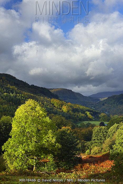 The Conway Valley, Snowdonia, Conwy, North Wales, UK, October 2008  -  David Noton/ npl