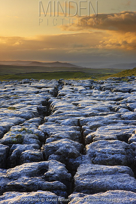Frost on a limestone pavement at Ing Scar above Malham Cove, Yorkshire Dales National Park, Yorkshire, England, UK, October 2008  -  David Noton/ npl