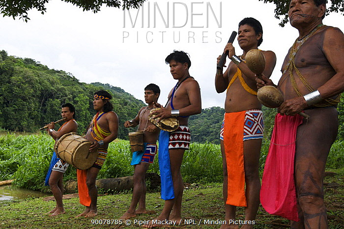 Minden Pictures stock photos - Embera Indian men dressed in ...