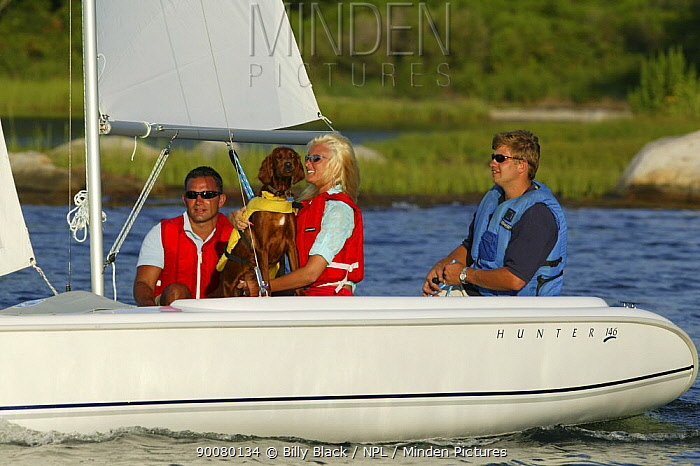 Friends and a dog sailing a Hunter 146 dinghy near Mystic, Connecticut, USA August 2004 Model and property released  -  Billy Black/ npl