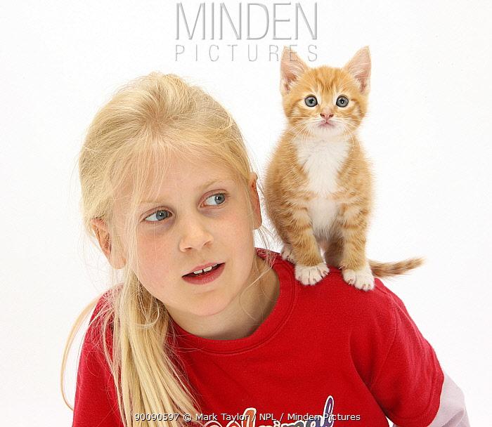 Girl with ginger kitten, 7 weeks, on her shoulder, model released  -  Mark Taylor/ npl