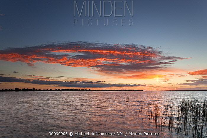 Sunset over lake, Esteros del Ibera, Argentina  -  Michael Hutchinson/ npl