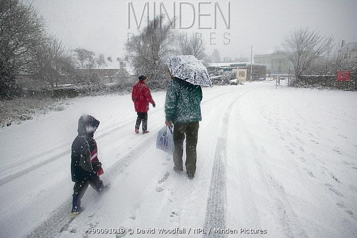 Family walking along road in snow, Denbigh, Denbighshire, Wales, January 2010  -  David Woodfall/ npl