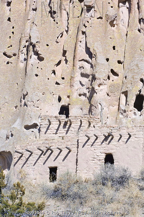 Cliff dwellings of the ancient native american Pueblo people, Bandelier National Monument, New Mexico, USA, February 2009  -  Rob Tilley/ npl
