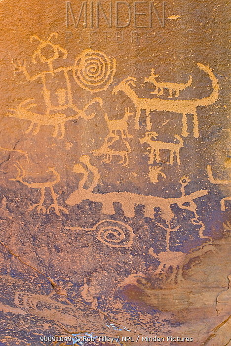 Rock engravings of the native american Pueblo people, Chaco Culture National Historical Park, New Mexico, USA, February 2009  -  Rob Tilley/ npl