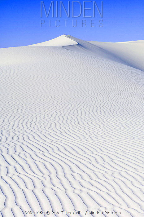White sand dunes against blue sky, White Sands National Monument, New Mexico, USA, February 2009  -  Rob Tilley/ npl