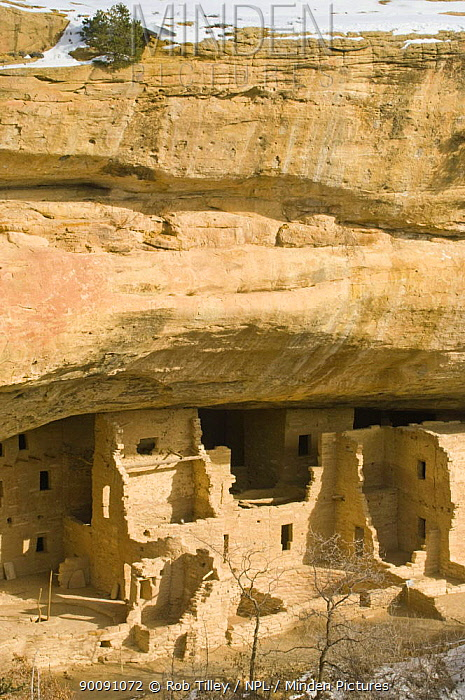 Spruce Tree House, ancient native american Pueblo dwellings, Mesa Verde NP, Colorado, USA, February 2009  -  Rob Tilley/ npl