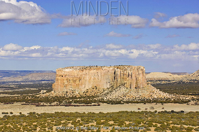 Enchanted Mesa, sandstone butte that was home to the native american Acoma tribe people, Acoma Pueblo, New Mexico, USA, February 2009  -  Rob Tilley/ npl