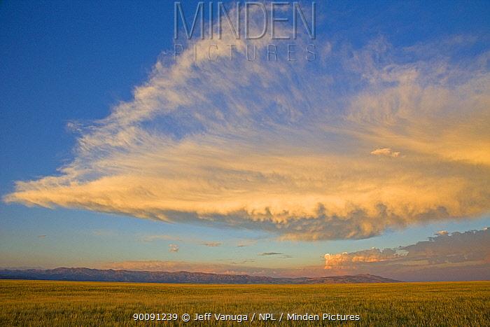 Table Mountain at sunset, near Dubois, Wyoming, USA, July 2008  -  Jeff Vanuga/ npl