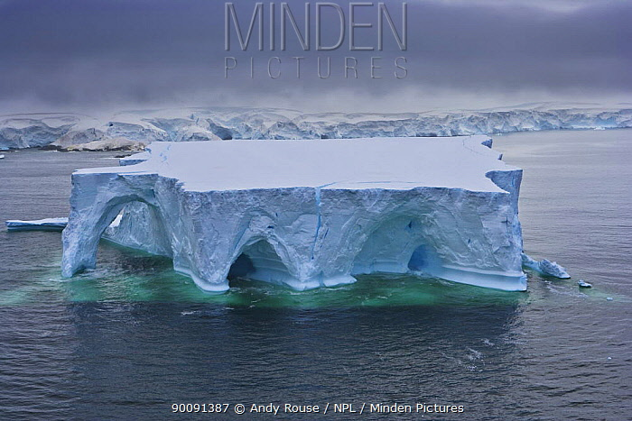 Huge tabular iceberg with ice arches and wave erosion, Antarctica (non-ex)  -  Andy Rouse/ npl