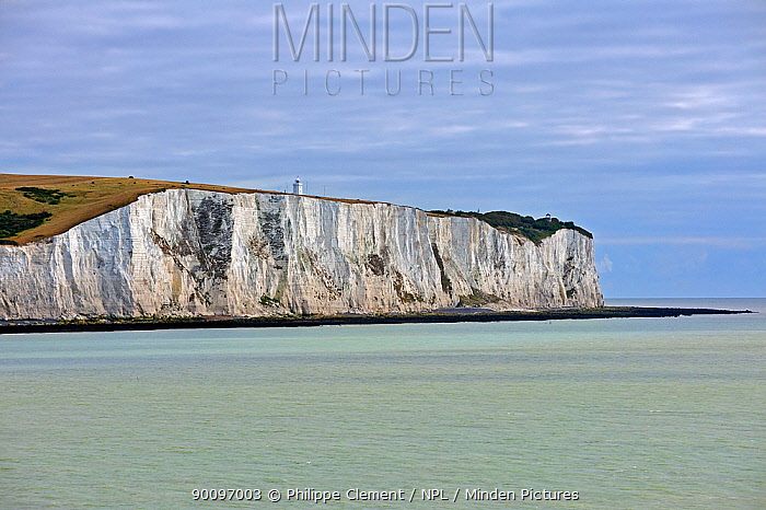 The white cliffs of Dover, Kent, UK  -  Philippe Clement/ npl
