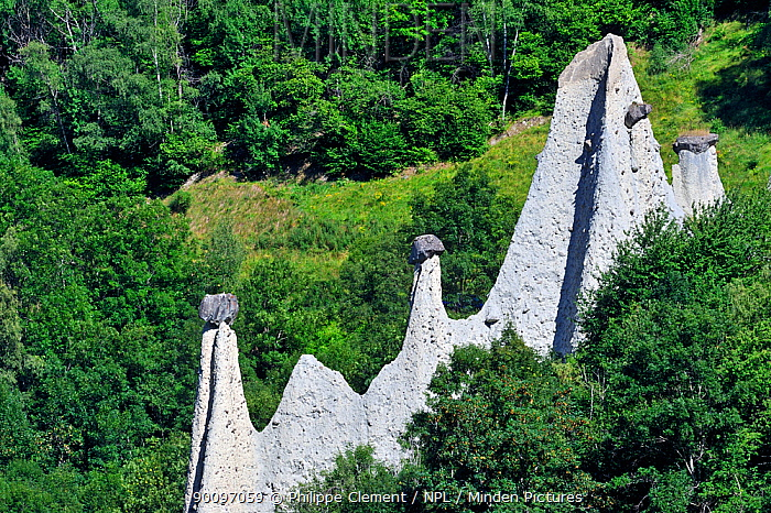 Pyramids of Euseigne, formed by erosion of soft rock below hard rock, Valais, Switzerland, July 2009  -  Philippe Clement/ npl