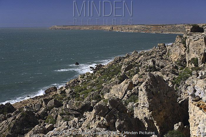 Atlantic coast near Beddouza Cape, Morocco, March 2007  -  Angelo Gandolfi/ npl