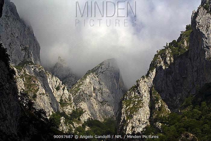 Cares Gorge, Picos de Europa National Park, Cantabria, Spain July 2008  -  Angelo Gandolfi/ npl