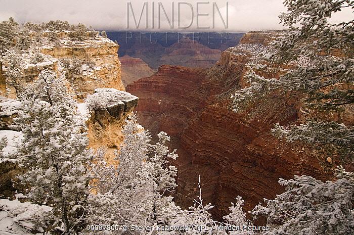 South rim of the Grand Canyon National Park in winter, Arizona, USA February 2009  -  Steven Kazlowski/ npl