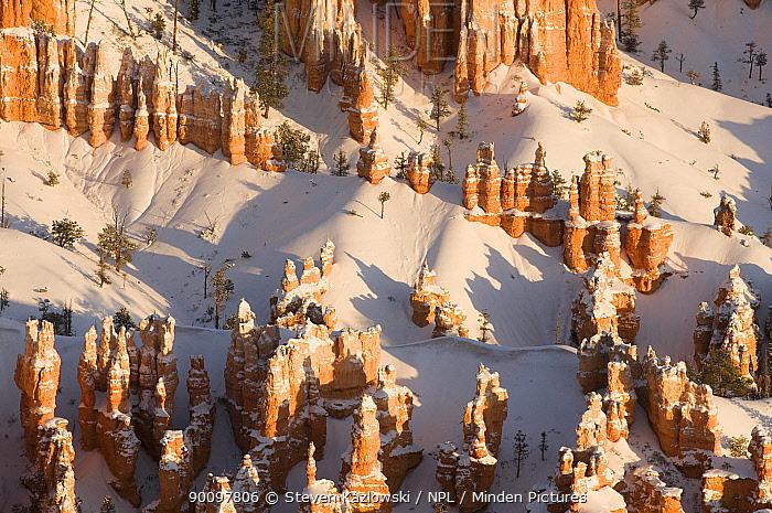 Winter in Bryce Canyon National Park, southern Utah, USA February 2009  -  Steven Kazlowski/ npl