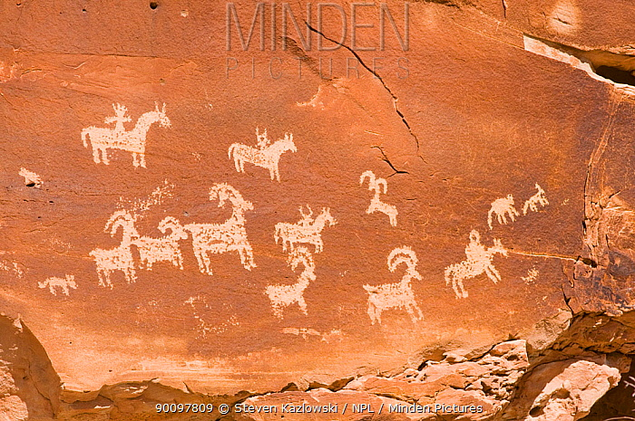 Petroglyphs on Newspaper Rock, a boulder in Canyonlands National Park, Utah, USA 2009  -  Steven Kazlowski/ npl