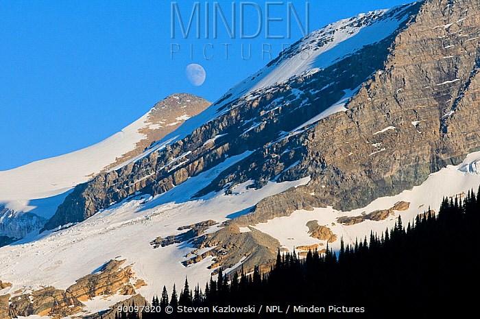 Full moon above mountains, Glacier National Park, Montana, USA July 2009  -  Steven Kazlowski/ npl