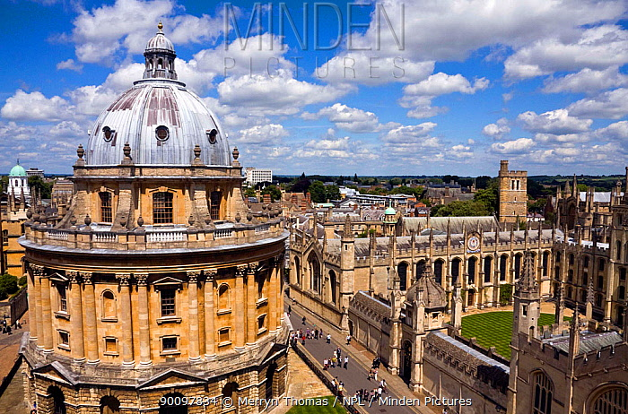 Radcliffe Camera and All Souls College, viewed from St Mary the Virgin Church, Oxford, UK June 2009  -  Merryn Thomas/ npl