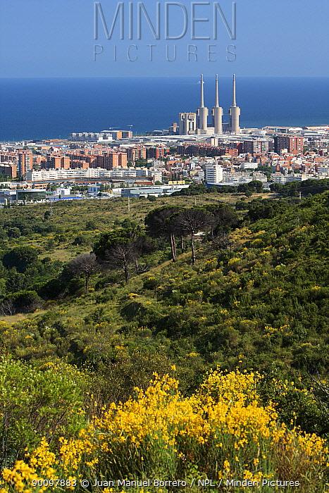 Sierra de Marina Natural Park, with Barcelona city in the background Catalonia, Spain  -  Juan Manuel Borrero/ npl