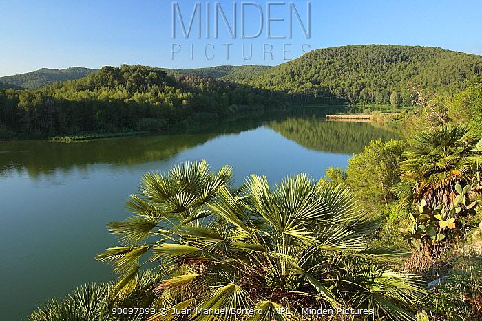 Reservoir, Foix Natural Park, Barcelona, Catalonia, Spain July 2008  -  Juan Manuel Borrero/ npl