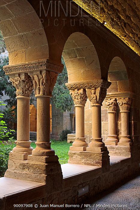 Stone pillars and sculpted capitals at cloisters of the St Benet monastery, Barcelona, Catalonia, Spain  -  Juan Manuel Borrero/ npl