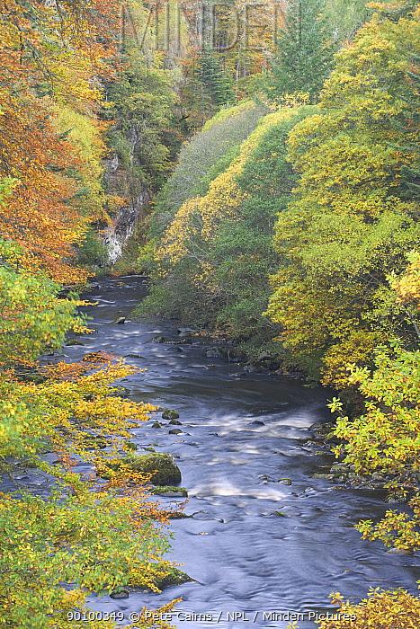 River Findhorn in autumn, Randolphs Leap, Moray, Scotland, UK, October 2008  -  Pete Cairns/ npl