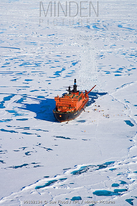 Aerial view of Russian nuclear icebreaker, NS 50 Lyet Pobyedi (50 Years of Victory) with tourists on ice, at the North Pole, July 2008  -  Sue Flood/ npl