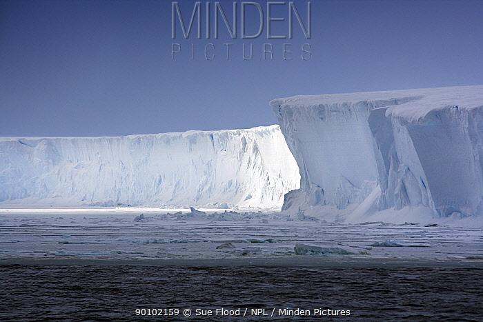Ross Ice Shelf, Antarctica, December 2008  -  Sue Flood/ npl