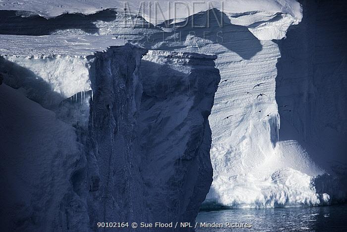 Drygalski ice tongue, the seaward extension of the David glacier (over 30 miles long) Antarctica, December 2008  -  Sue Flood/ npl