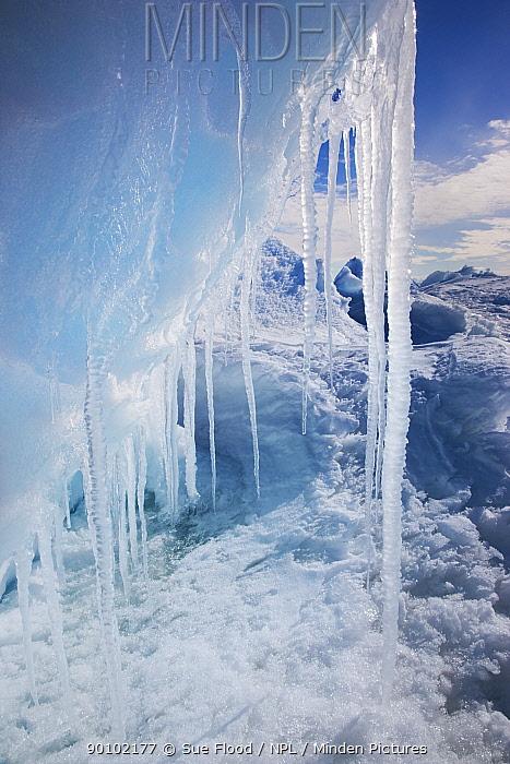 Iceberg and icicles near Cape Washington, Ross Sea, Antarctica, December 2008  -  Sue Flood/ npl