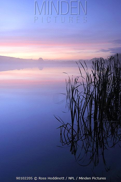 Lower Tamar Lake at dawn, Cornwall, UK October 2009  -  Ross Hoddinott/ npl